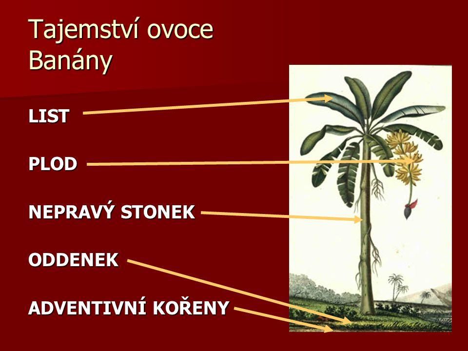 Tajemství ovoce Banány