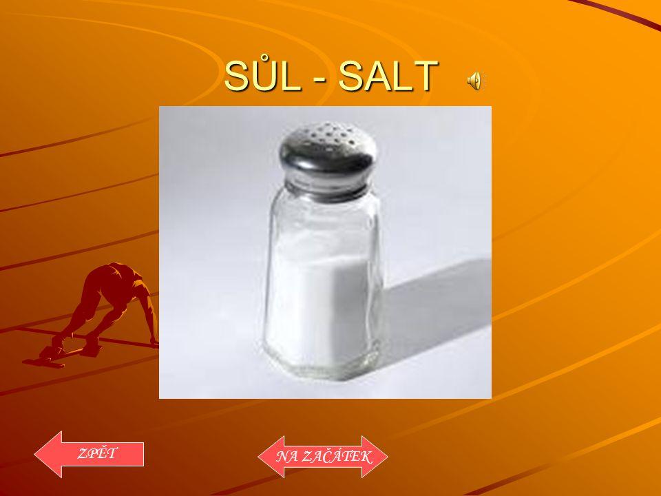 SŮL - SALT ZPĚT NA ZAČÁTEK