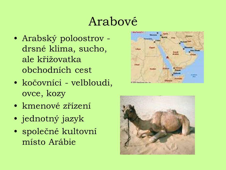 Arabové Arabský poloostrov - drsné klima, sucho, ale křižovatka obchodních cest. kočovníci - velbloudi, ovce, kozy.