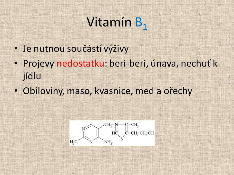 Vitamín B1 Je nutnou součástí výživy