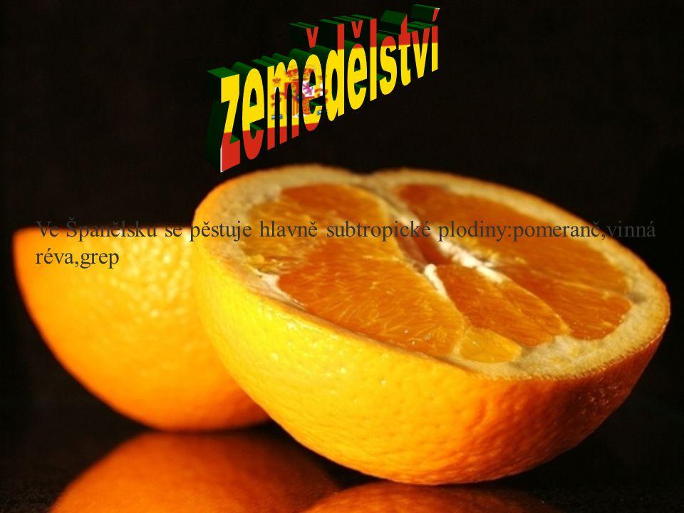 zemědělství Ve Španělsku se pěstuje hlavně subtropické plodiny:pomeranč,vinná réva,grep