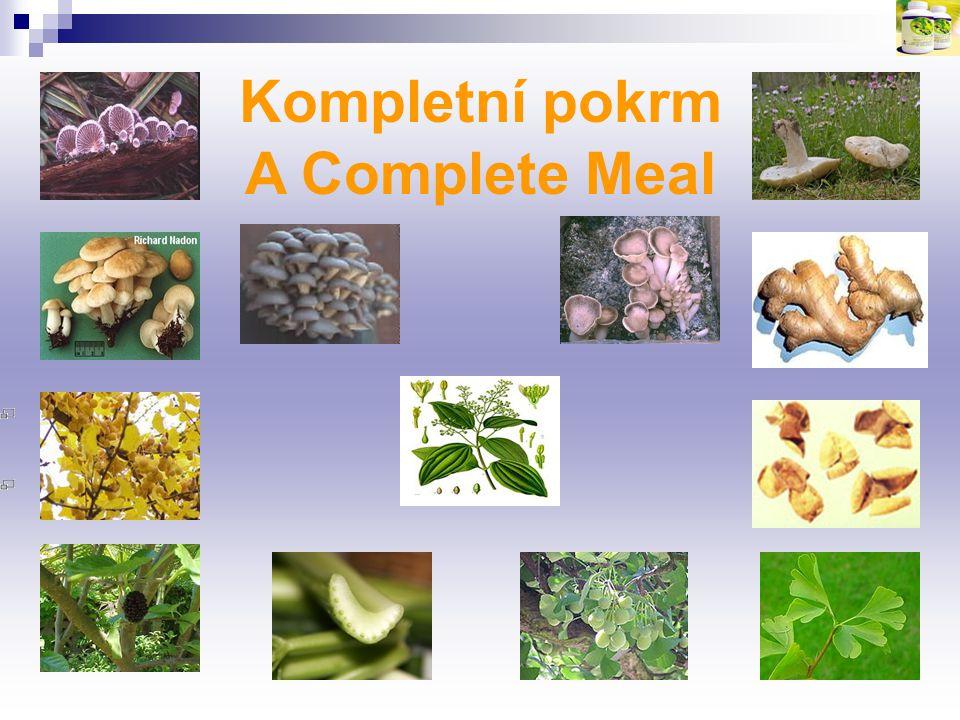 Kompletní pokrm A Complete Meal