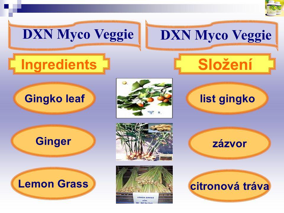 Složení DXN Myco Veggie DXN Myco Veggie Ingredients Gingko leaf