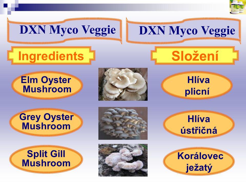 Složení DXN Myco Veggie DXN Myco Veggie Ingredients Elm Oyster