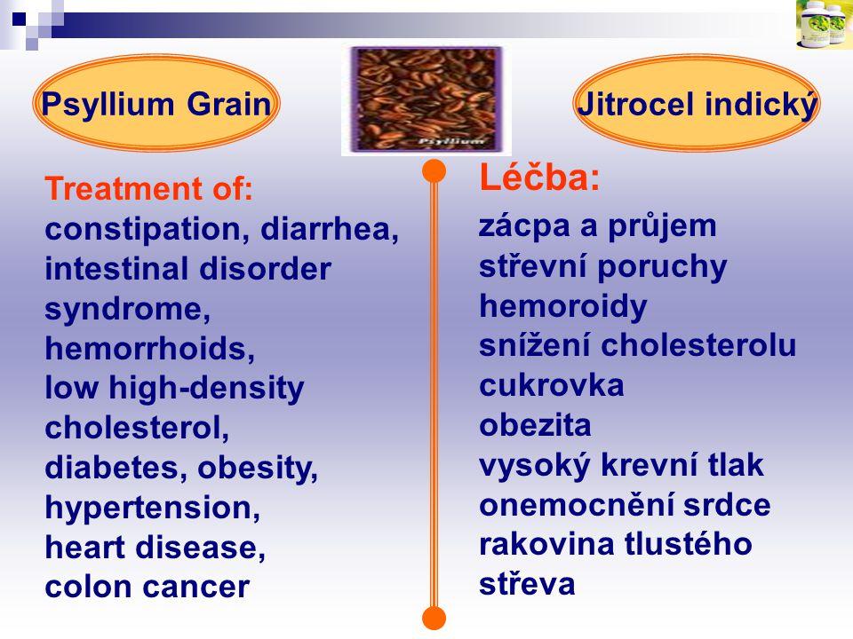 Léčba: zácpa a průjem Psyllium Grain Jitrocel indický střevní poruchy