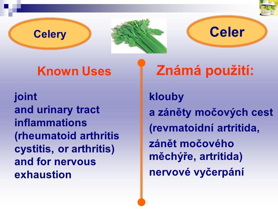 Celer Známá použití: Known Uses Celery joint
