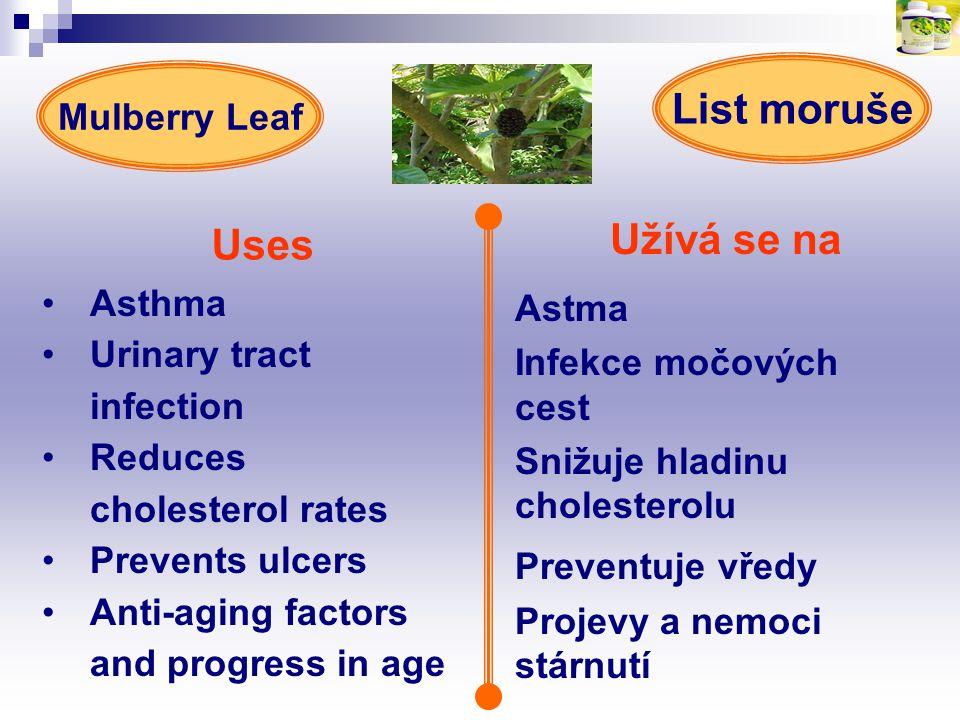 List moruše Uses Užívá se na Preventuje vředy Mulberry Leaf Asthma