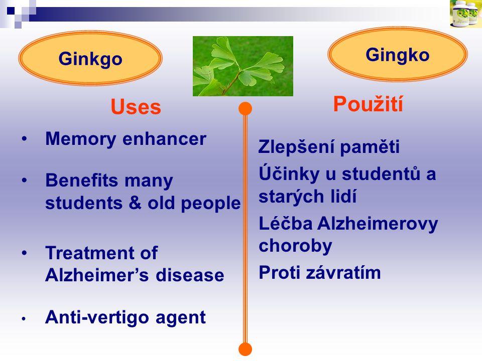 Uses Použití Gingko Ginkgo Memory enhancer Zlepšení paměti