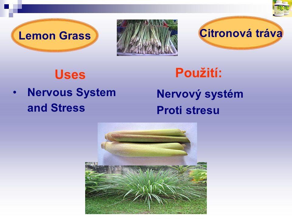 Uses Použití: Citronová tráva Lemon Grass Nervous System and Stress