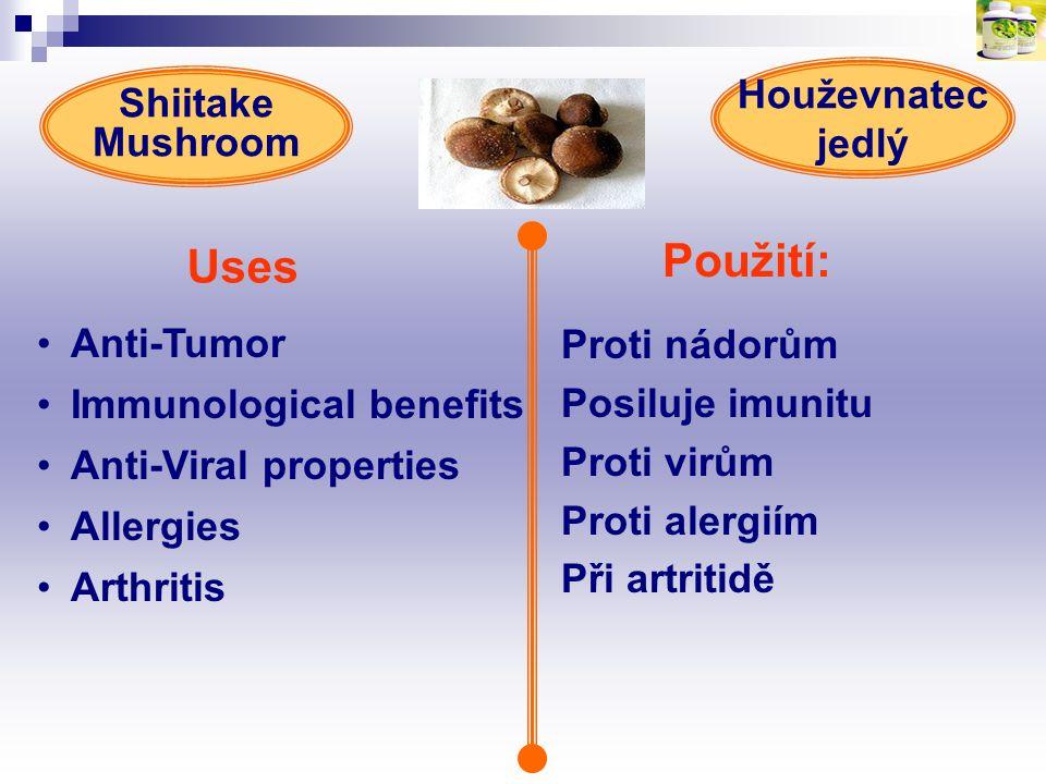 Uses Použití: Houževnatec jedlý Shiitake Mushroom Anti-Tumor