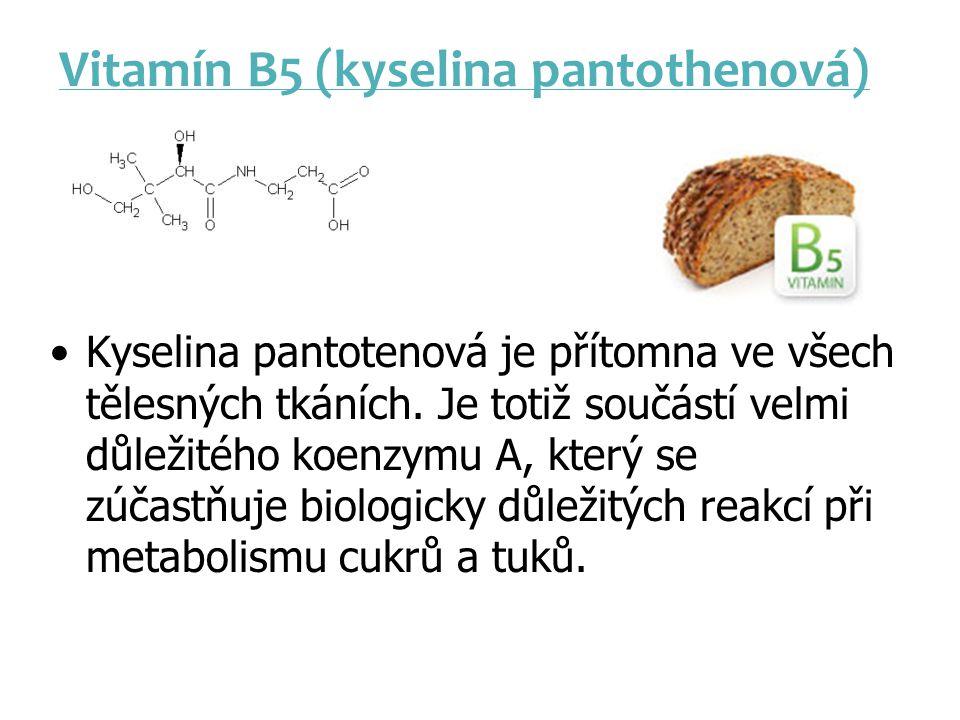 Vitamín B5 (kyselina pantothenová)