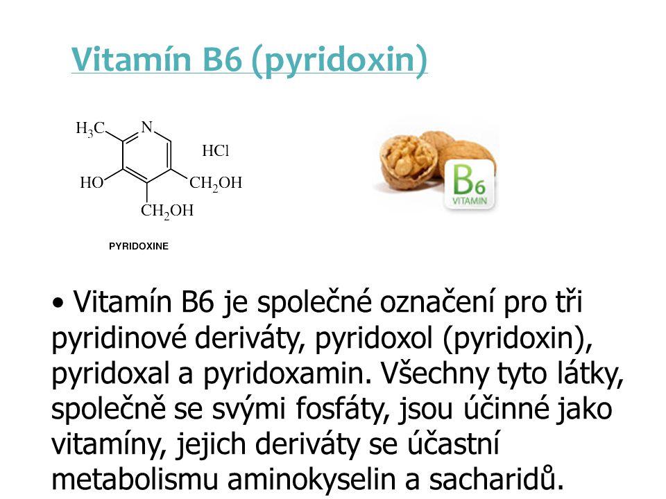 Vitamín B6 (pyridoxin)