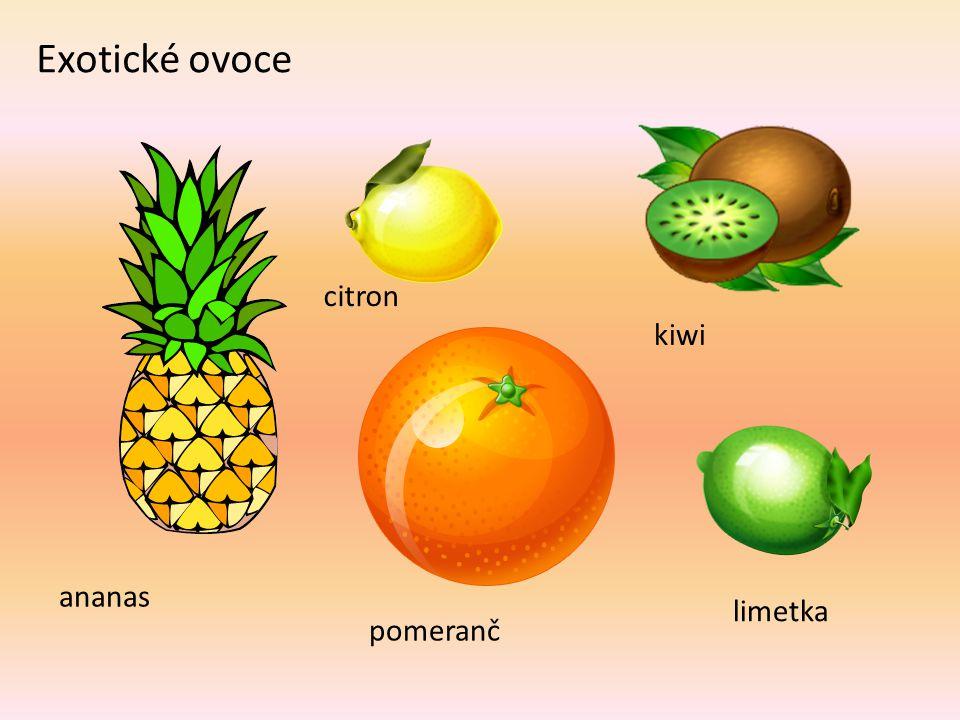 Exotické ovoce citron kiwi ananas limetka pomeranč