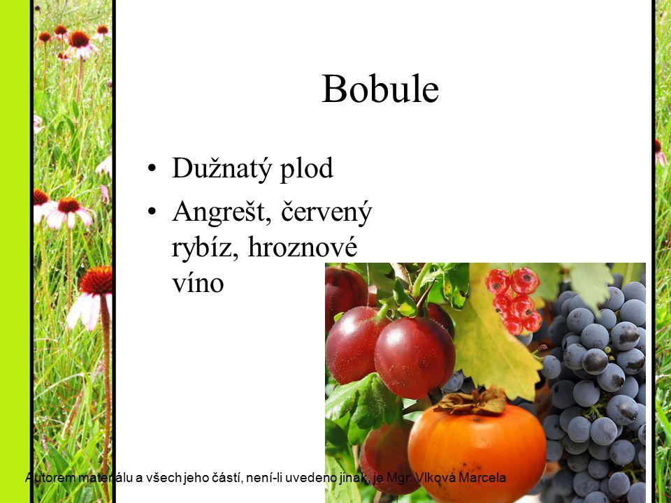 Bobule Dužnatý plod Angrešt, červený rybíz, hroznové víno