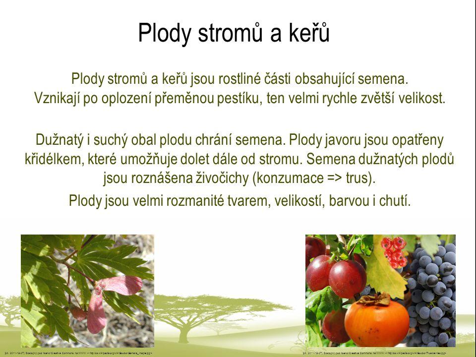 Plody jsou velmi rozmanité tvarem, velikostí, barvou i chutí.