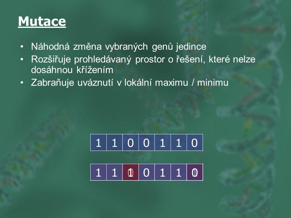 Mutace 1 1 1 1 1 1 Náhodná změna vybraných genů jedince