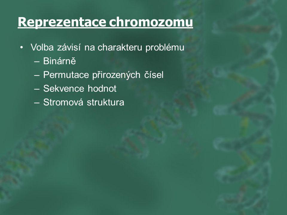 Reprezentace chromozomu