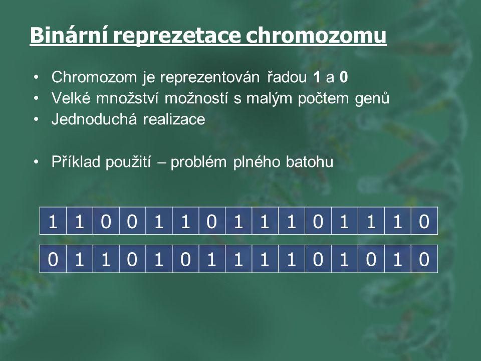 Binární reprezetace chromozomu