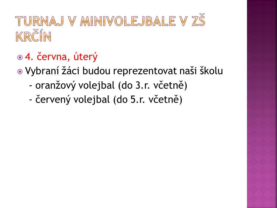 Turnaj v minivolejbale v ZŠ Krčín