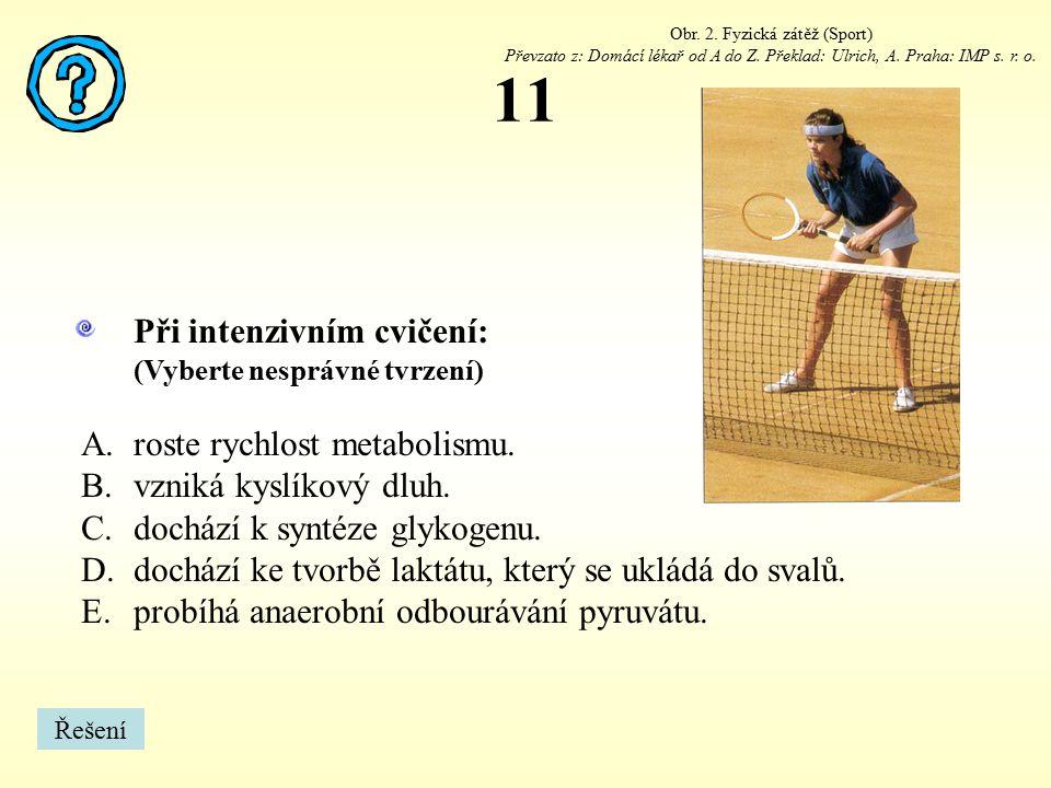Obr. 2. Fyzická zátěž (Sport)