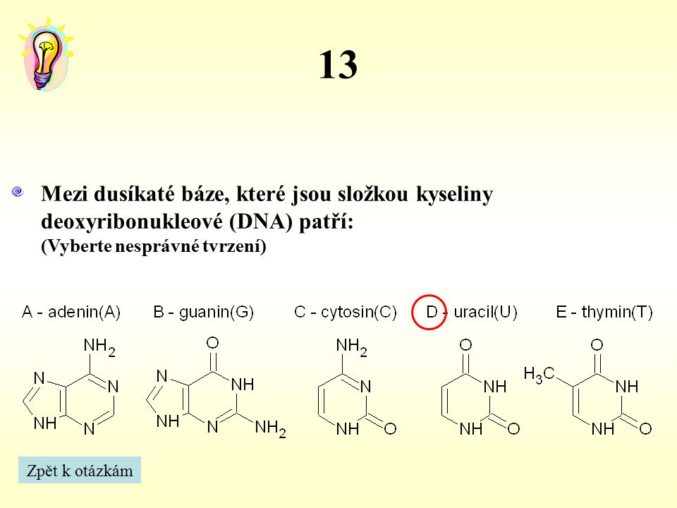13 Mezi dusíkaté báze, které jsou složkou kyseliny deoxyribonukleové (DNA) patří: (Vyberte nesprávné tvrzení)