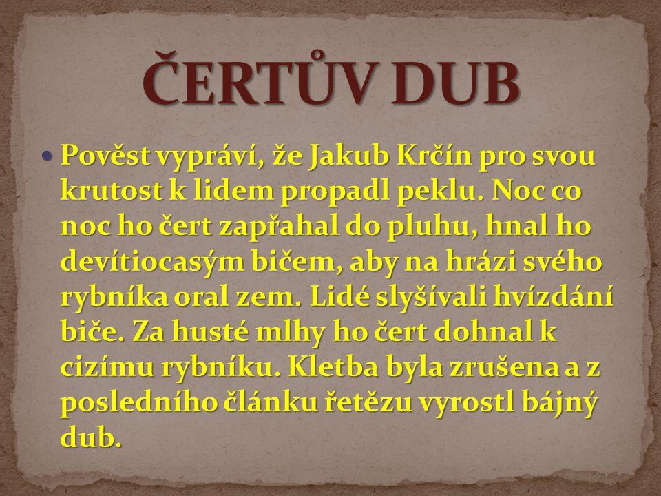 ČERTŮV DUB