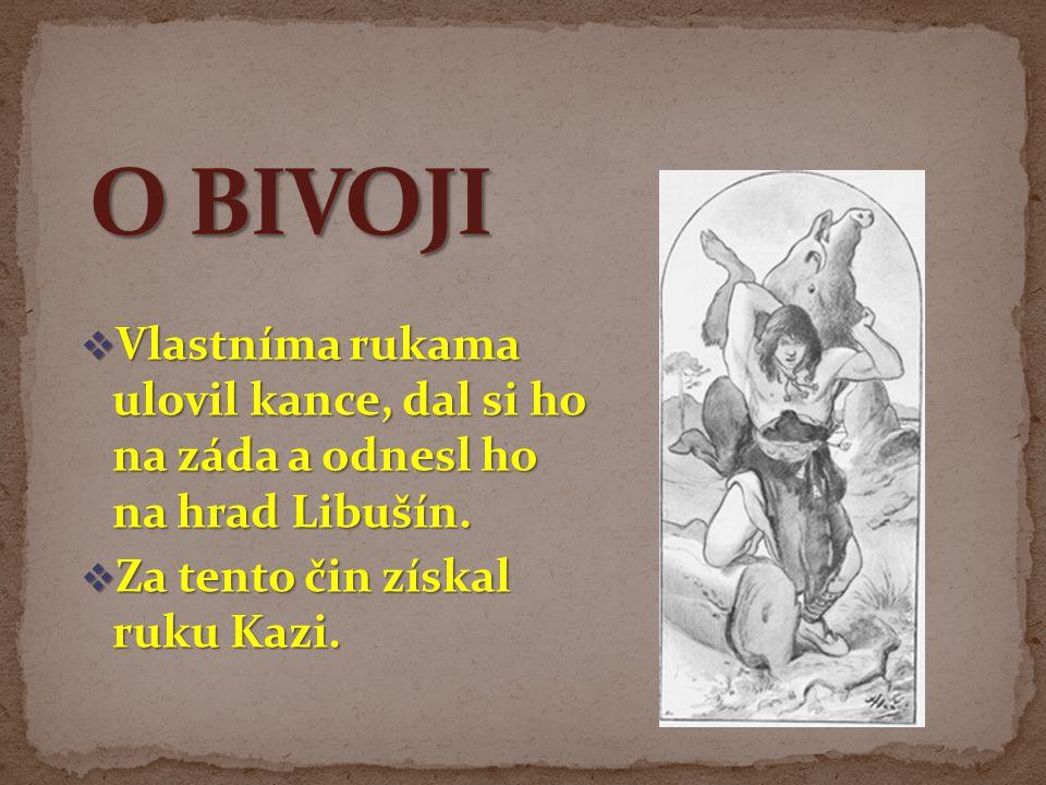 O BIVOJI Vlastníma rukama ulovil kance, dal si ho na záda a odnesl ho na hrad Libušín.
