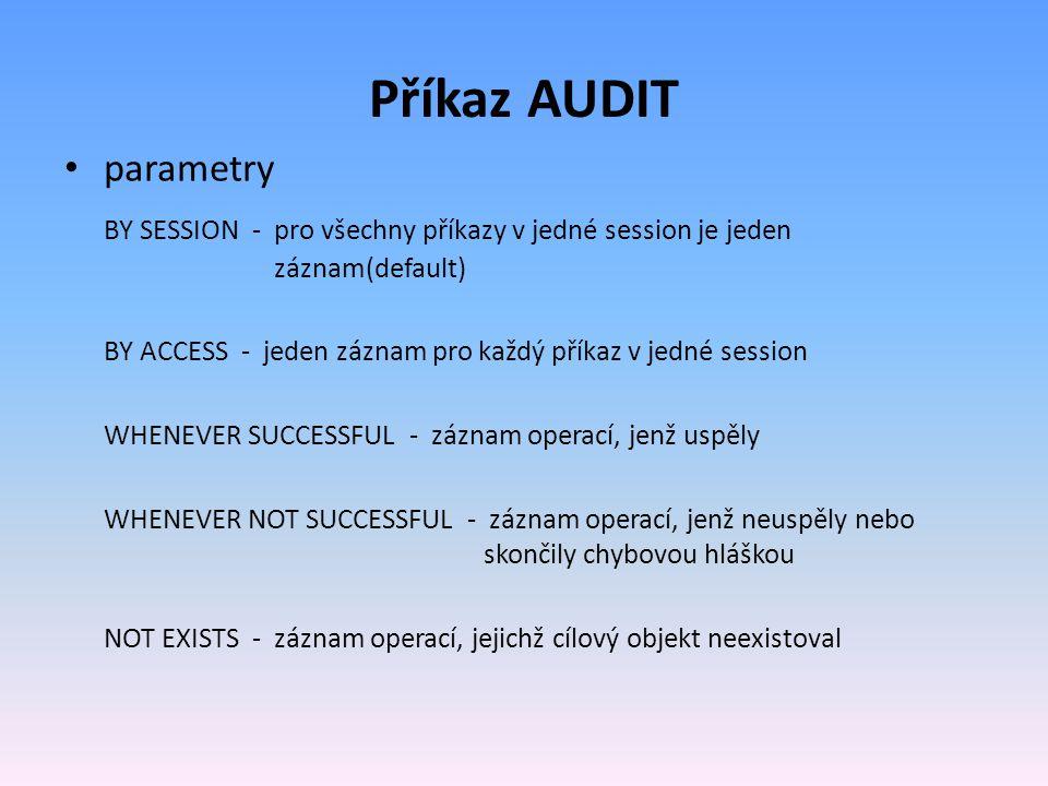 Příkaz AUDIT parametry