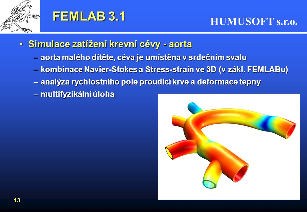 FEMLAB 3.1 Simulace zatížení krevní cévy - aorta