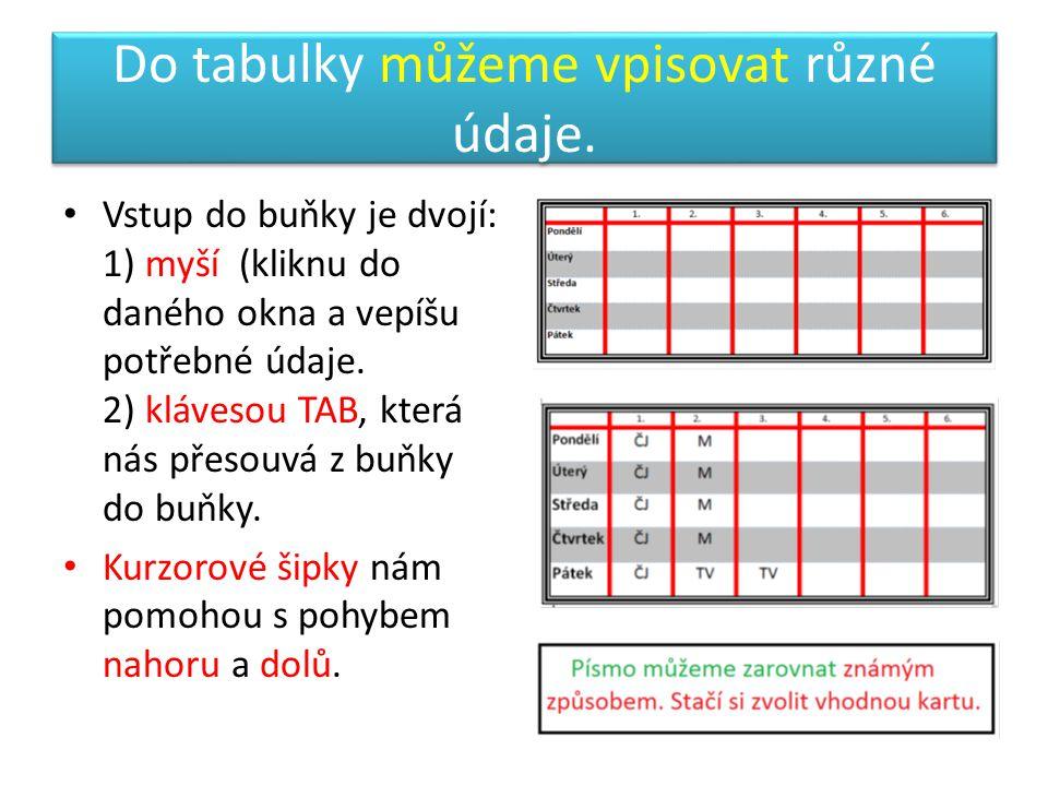 Do tabulky můžeme vpisovat různé údaje.
