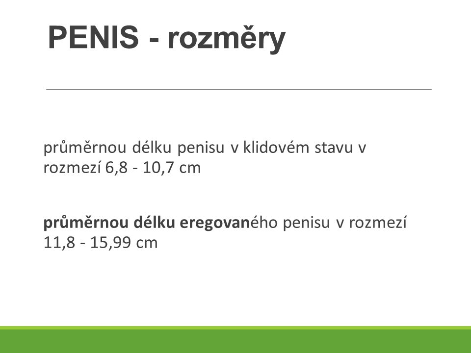 PENIS - rozměry průměrnou délku penisu v klidovém stavu v rozmezí 6,8 - 10,7 cm.
