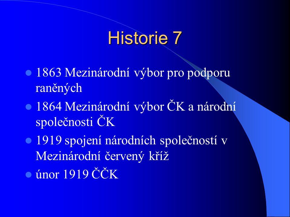 Historie 7 1863 Mezinárodní výbor pro podporu raněných