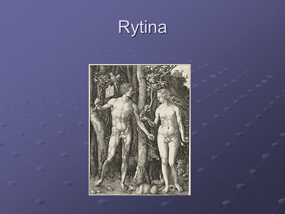 Rytina