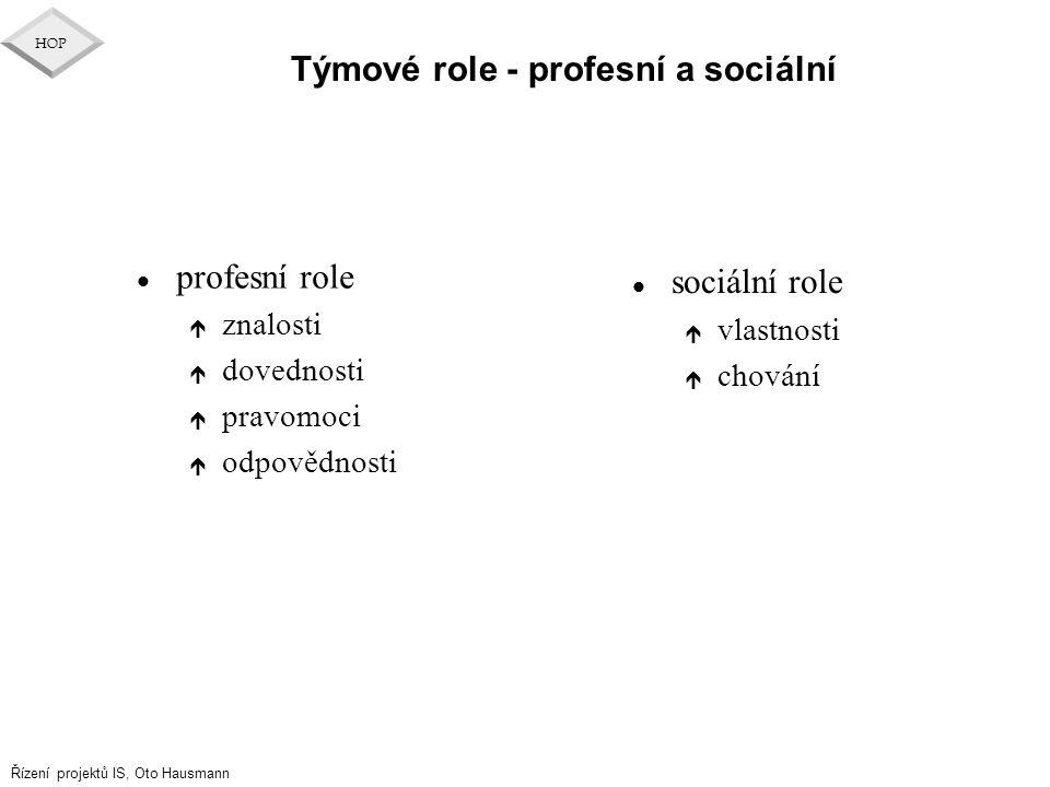 Týmové role - profesní a sociální