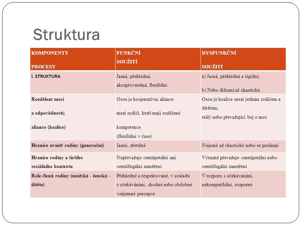 Struktura KOMPONENTY PROCESY FUNKČNÍ SOUŽITÍ DYSFUNKČNÍ SOUŽITÍ
