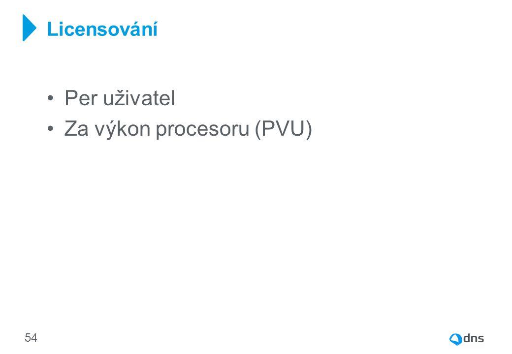 Za výkon procesoru (PVU)
