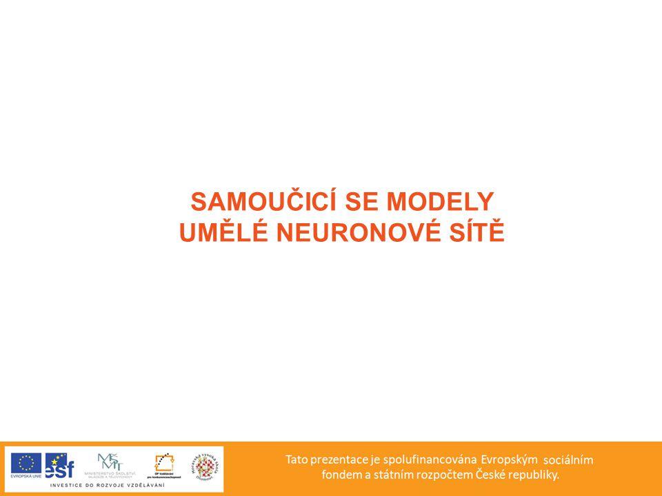 SAMOUČICÍ SE MODELY UMĚLÉ NEURONOVÉ SÍTĚ