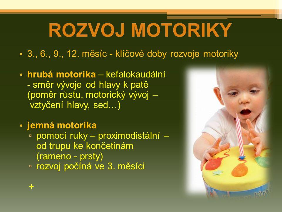 ROZVOJ MOTORIKY 3., 6., 9., 12. měsíc - klíčové doby rozvoje motoriky