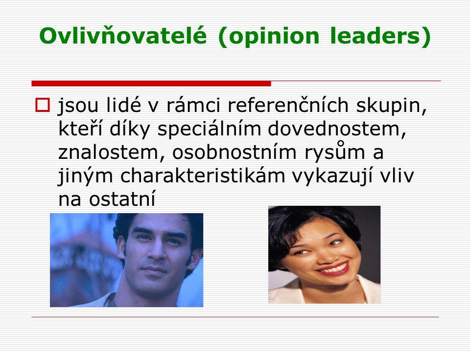 Ovlivňovatelé (opinion leaders)
