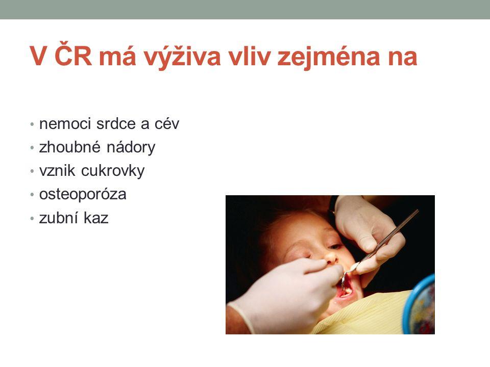 V ČR má výživa vliv zejména na
