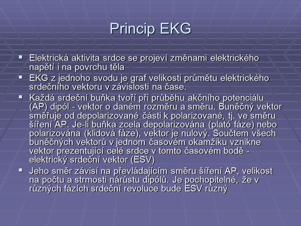 Princip EKG Elektrická aktivita srdce se projeví změnami elektrického napětí i na povrchu těla.