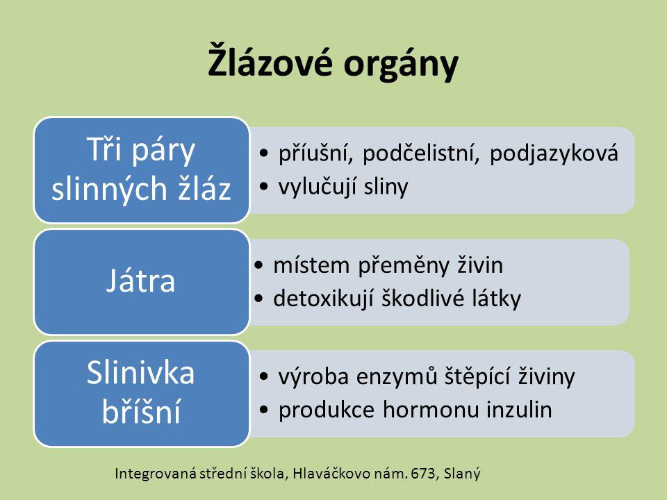 Žlázové orgány Integrovaná střední škola, Hlaváčkovo nám. 673, Slaný