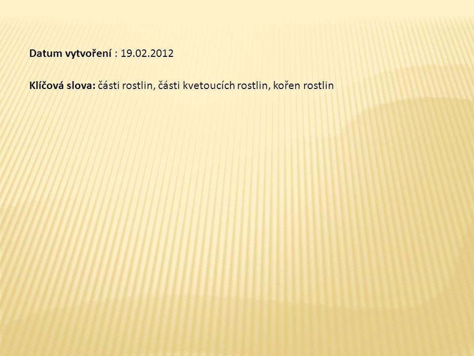 Datum vytvoření : 19.02.2012 Klíčová slova: části rostlin, části kvetoucích rostlin, kořen rostlin