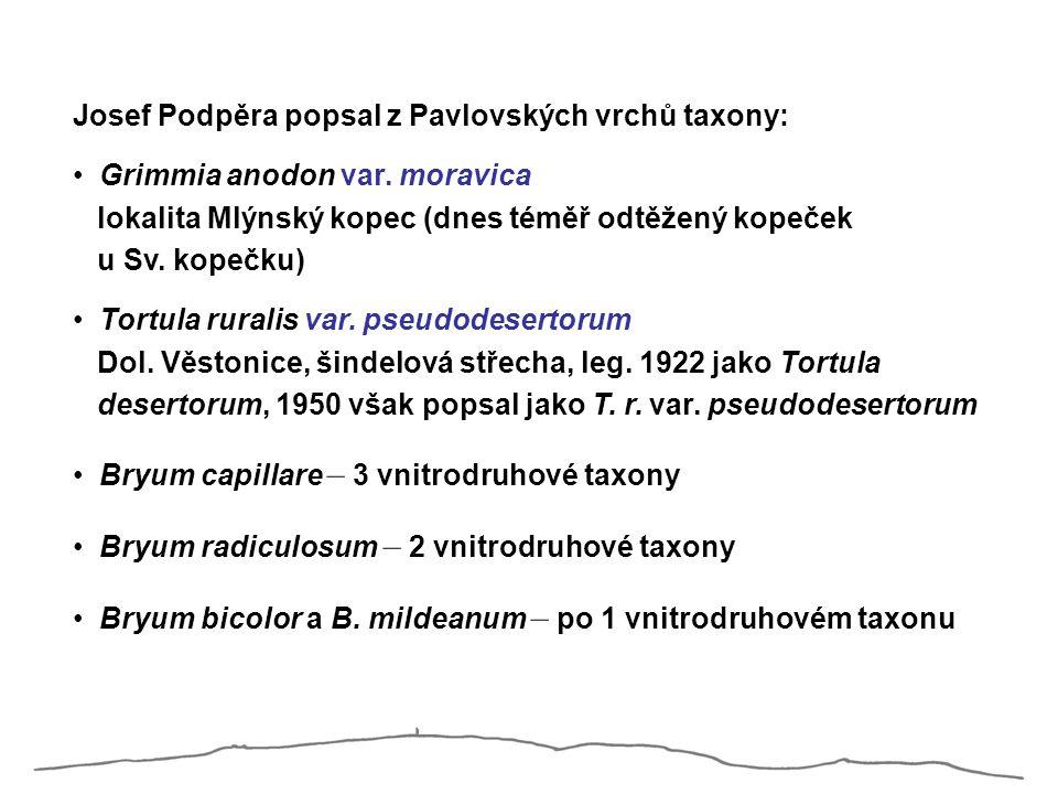 Josef Podpěra popsal z Pavlovských vrchů taxony: