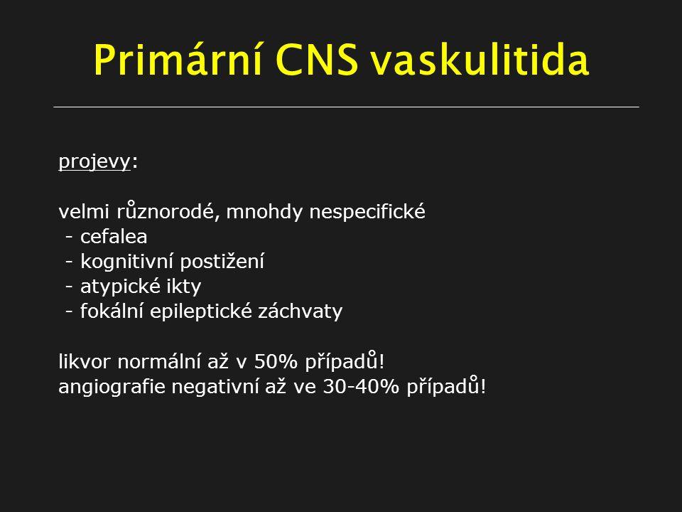 Primární CNS vaskulitida