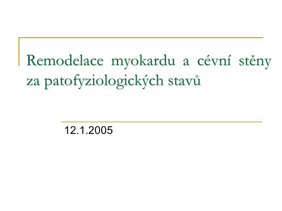 Remodelace myokardu a cévní stěny za patofyziologických stavů