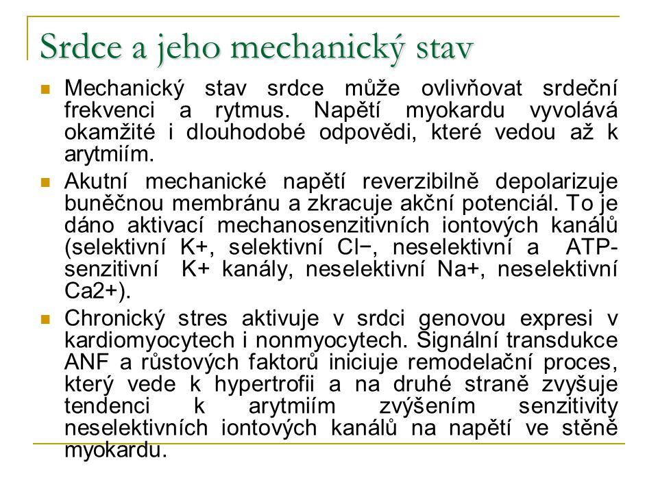 Srdce a jeho mechanický stav
