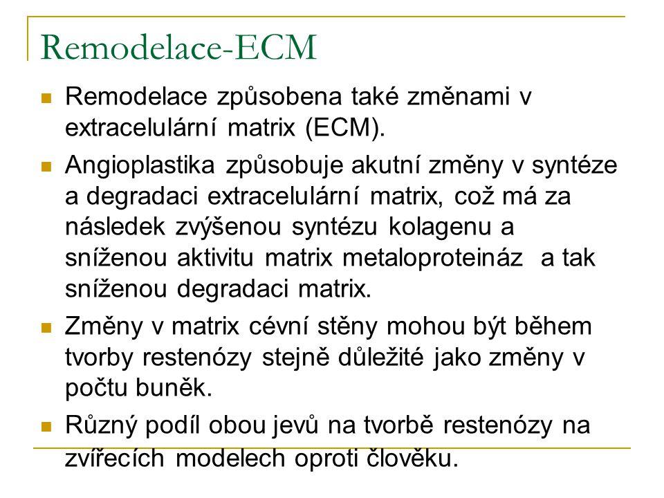 Remodelace-ECM Remodelace způsobena také změnami v extracelulární matrix (ECM).