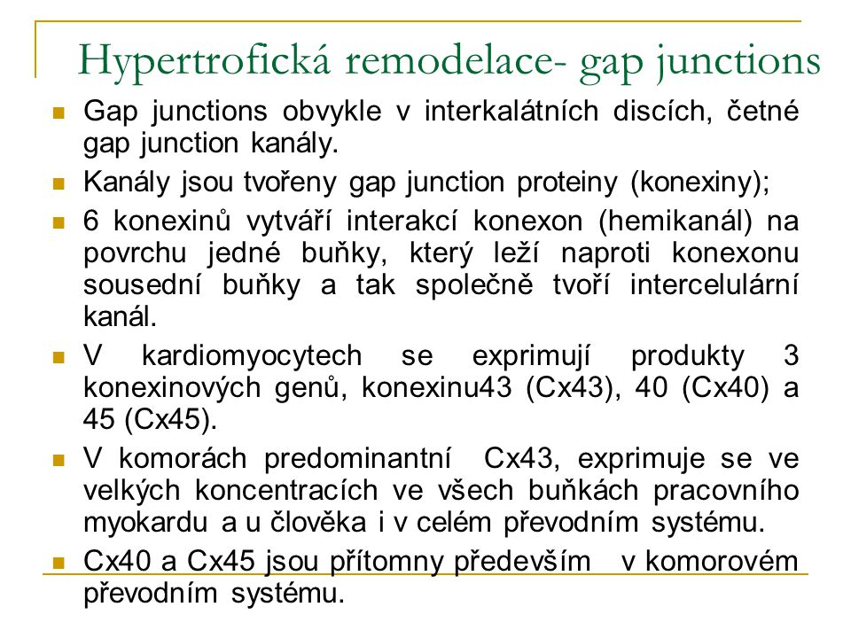Hypertrofická remodelace- gap junctions