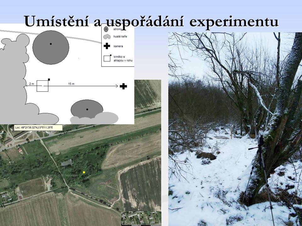 Umístění a uspořádání experimentu